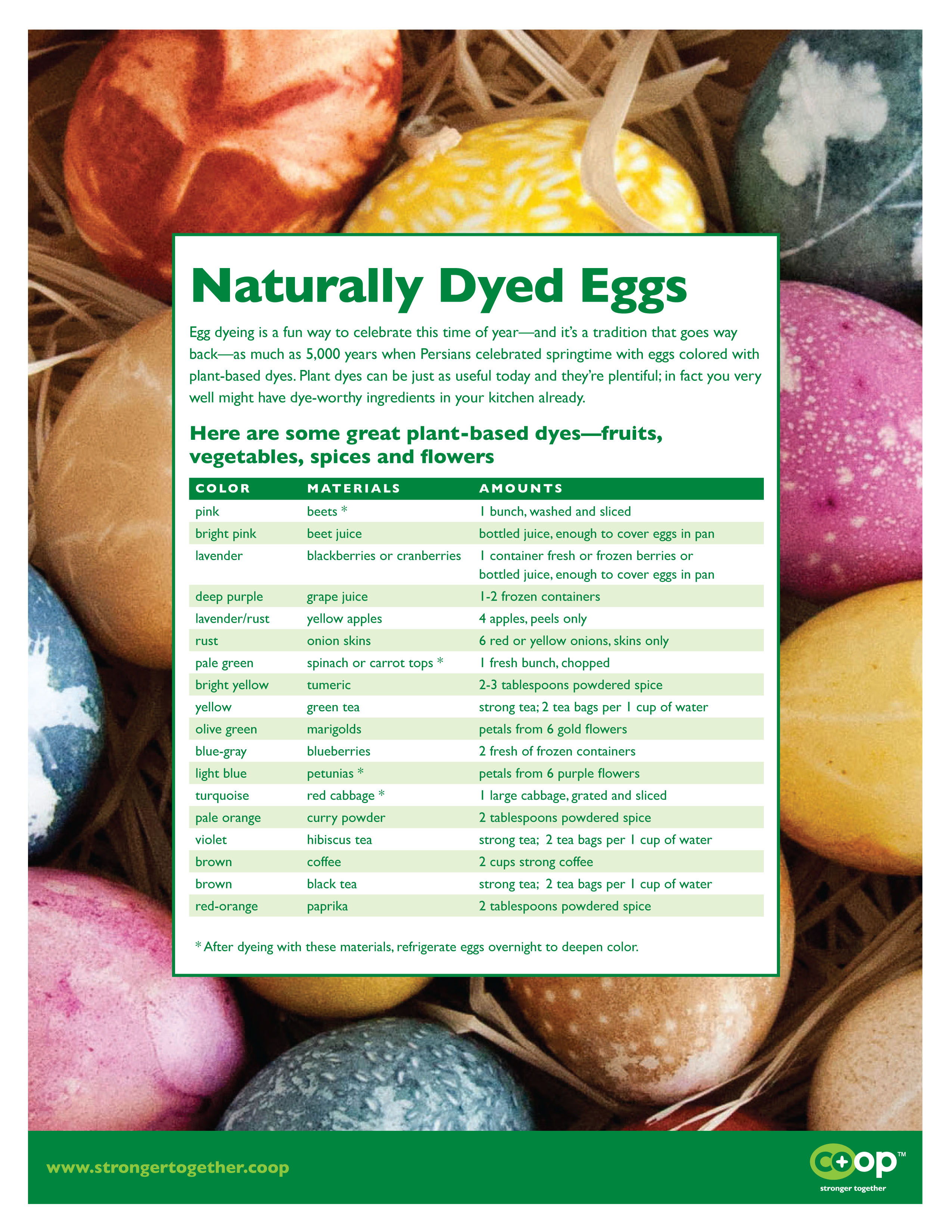 2013_Naturally_Dyed_Eggs_Handout(1)-1